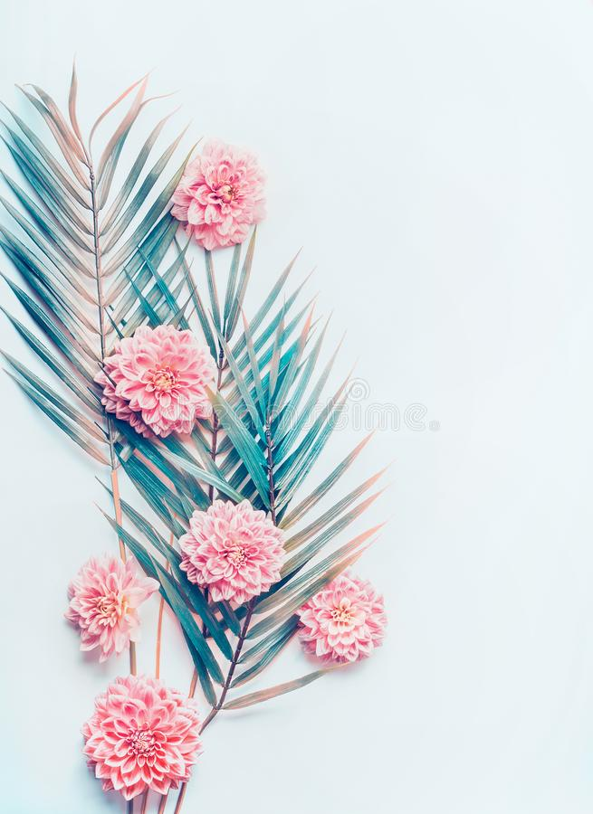 Den idérika orienteringen med tropiska palmblad och pastellfärgade rosa färger blommar på skrivbords- bakgrund för turkosblått, d arkivfoton