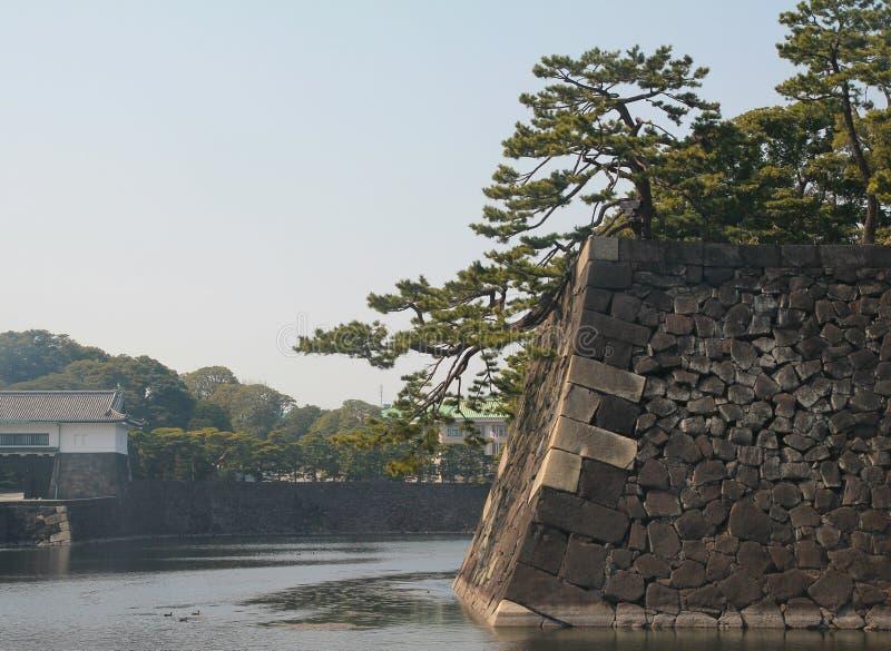 Den imperialistiska slotten av Tokyo, Japan royaltyfri fotografi