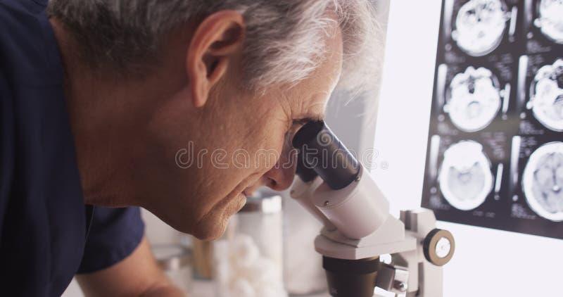 Den intelligenta mitt åldrades doktorn som ser in i miscrope royaltyfri bild