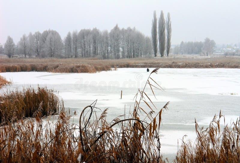 Den isbundna sjön arkivfoto