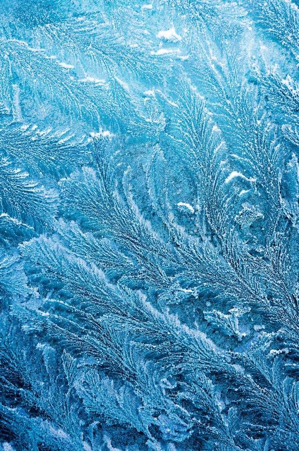 Den iskalla frosten bildar iskristaller i härliga unika modeller royaltyfri bild