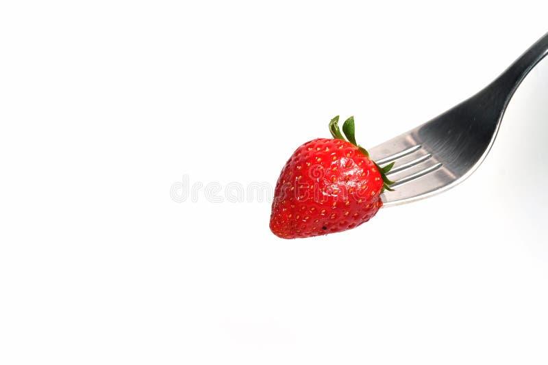 Den isolerade bilden av den nya röda jordgubben på silvergaffel och utrymme för skriver formuleringar arkivfoto