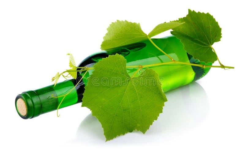 den isolerade flaskdruvan låter vara vit wine arkivfoton