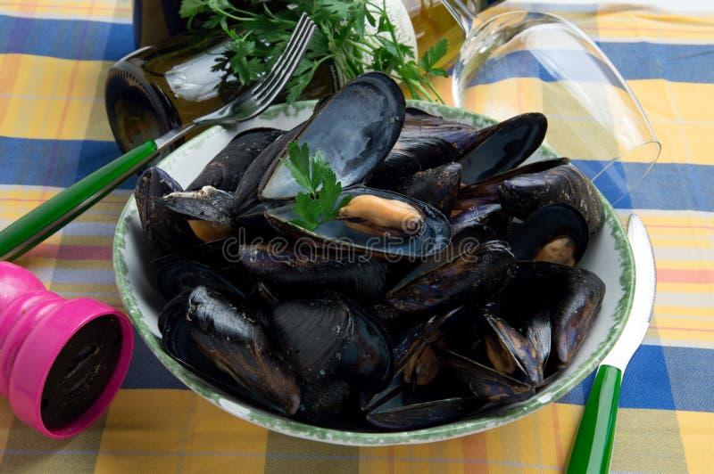 Den italienska typiska musslasumoen kallade 'Impepata di slags tvåsittssoffa ', royaltyfri bild