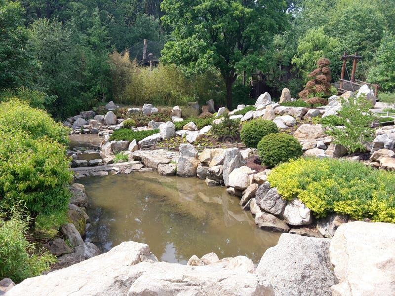 Den japanska trädgården Mu-Shin med ström och bro på ZOO Lesna, Zlin, Tjeckien royaltyfria foton