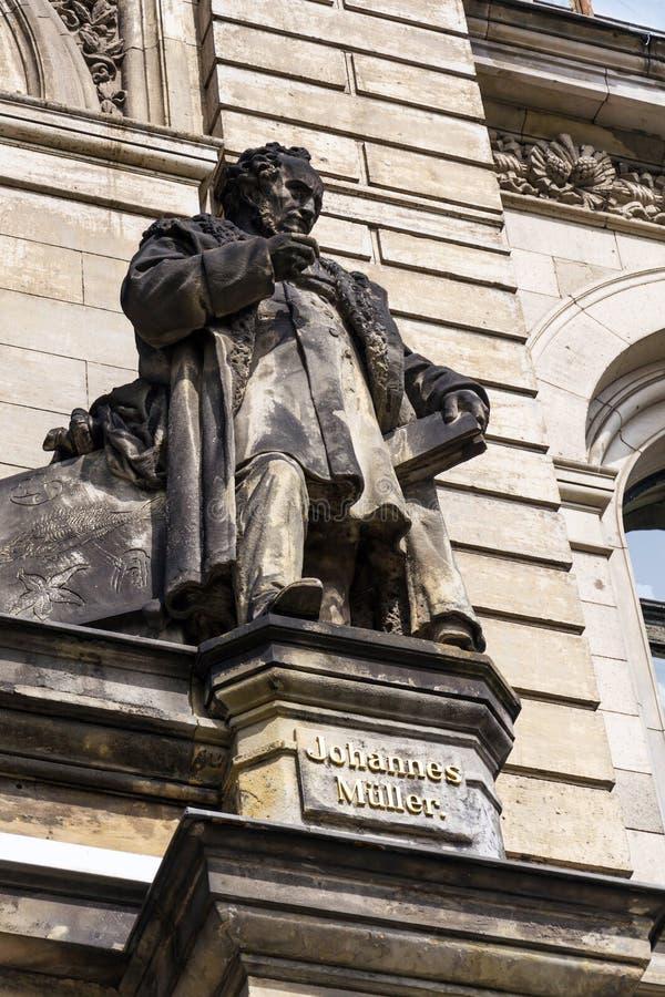 Den Johannes Peter Muller statyn av museet pälsfodrar framme Naturkunde - naturhistoriamuseum i Berlin, Tyskland arkivbilder