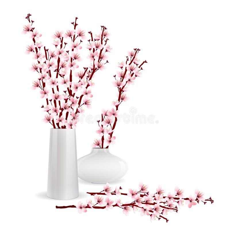 Den körsbärsröda blomningen förgrena sig i vas royaltyfri illustrationer