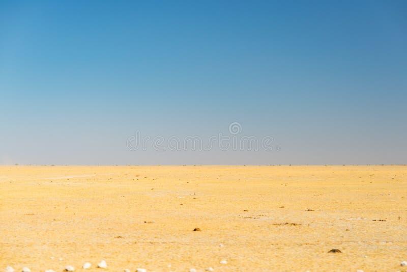 Den Kalahari öknen, saltar framlänges, inget var, den tomma slätten, klar himmel, vägtur i Botswana, loppdestination i Afrika royaltyfri fotografi
