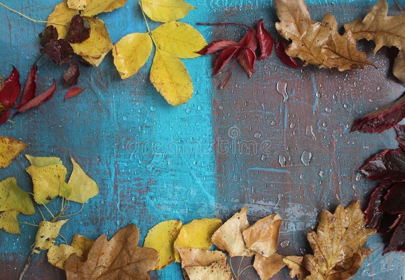 Den kalla hösten och regn, blått målar lite arkivbild