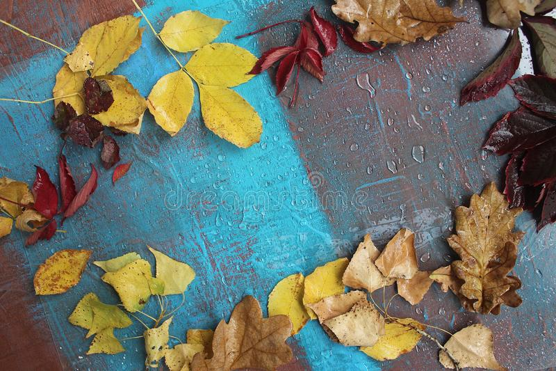 Den kalla hösten och regn, blått målar lite arkivfoton