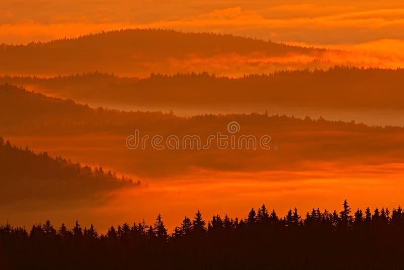 Den kalla morgonen i den Sumava nationalparken, övervintrar kullar och byar i dimman och rimfrosten, dimmig sikt på det tjeckiska royaltyfria foton