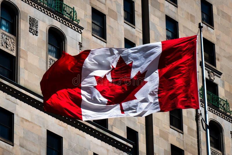 Den kanadensiska flaggan royaltyfria foton