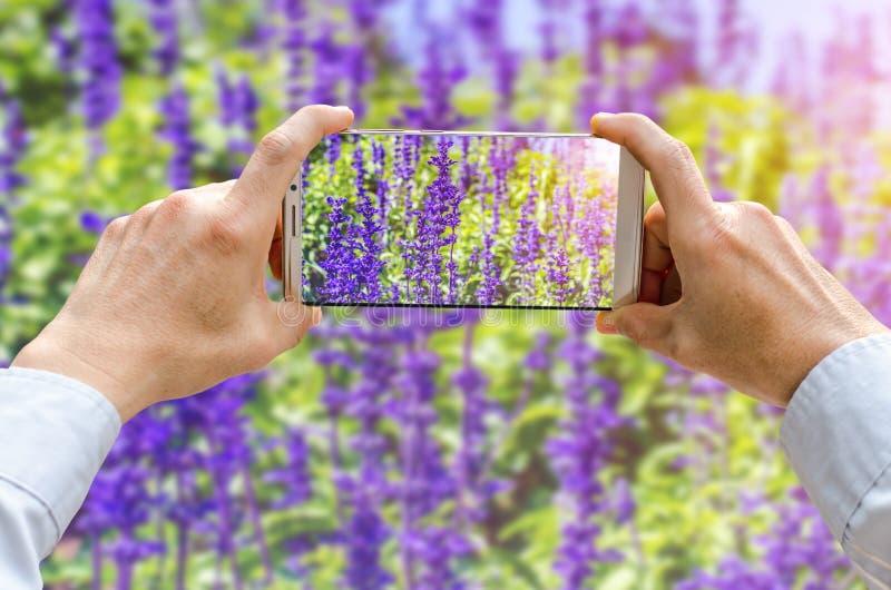 Den kantjusterade skottsikten av man` s räcker danandefotoet på mobiltelefonen royaltyfri foto