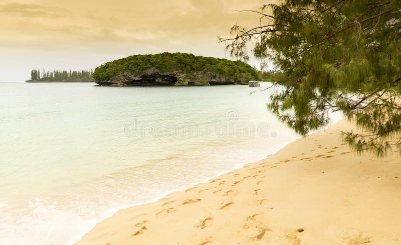 Den Kanumera strandön av sörjer royaltyfri foto