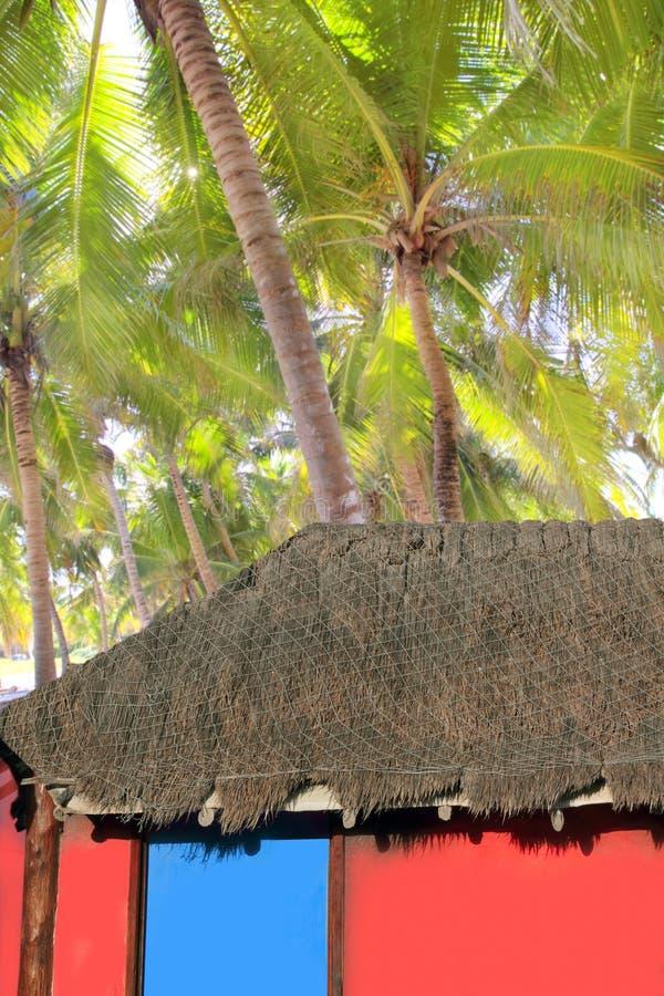 den karibiska kokosnöthuskojan gömma i handflatan röda trees royaltyfri bild