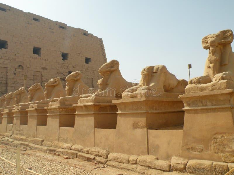 Den Karnak templet fördärvar, Egypten arkivfoto