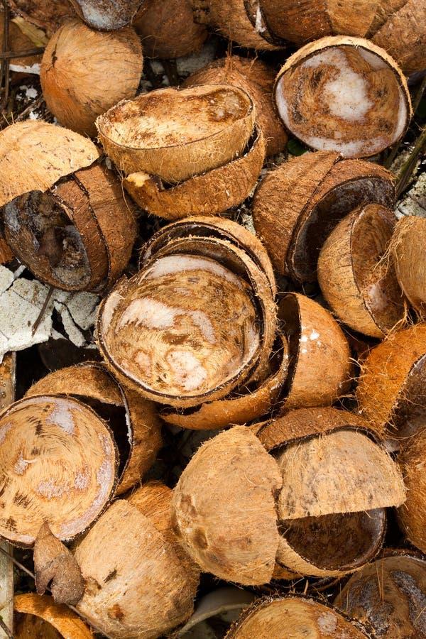 den kasserade kokosnöten husks stapeln royaltyfria bilder