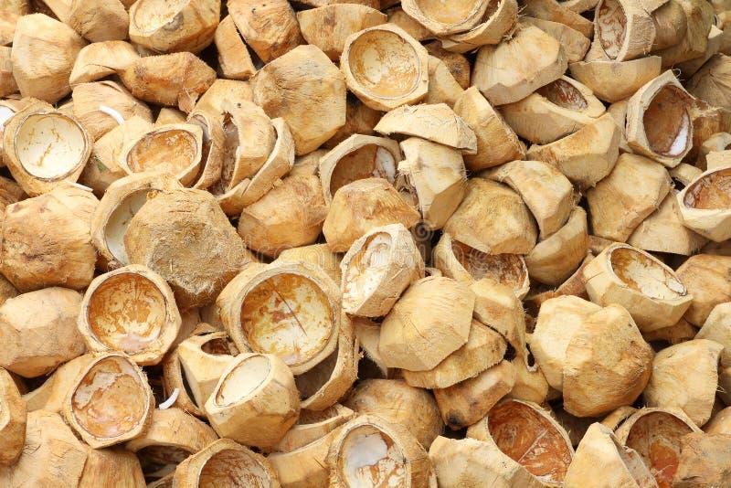 den kasserade kokosnöten husks stapeln royaltyfri foto