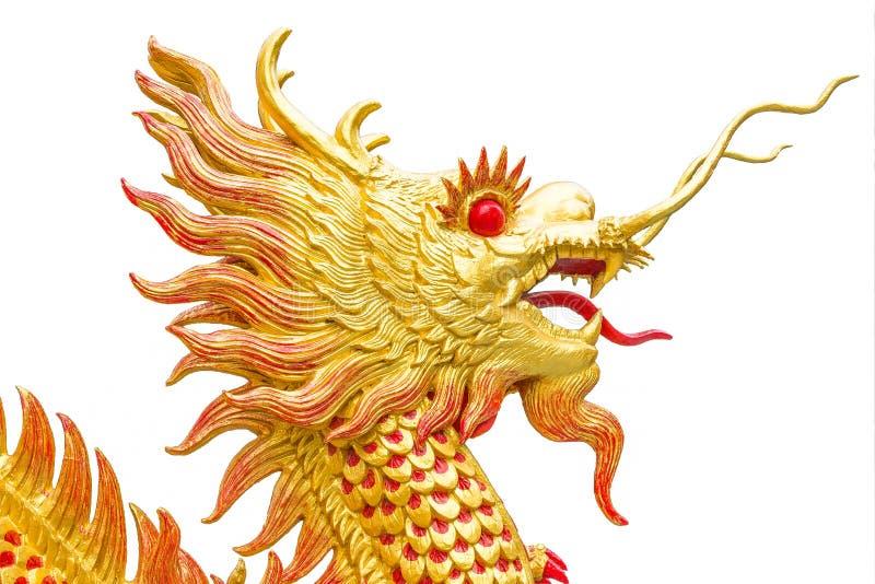 Den kinesiska stilen för guld- drake på vit bakgrundskonst arkivbilder