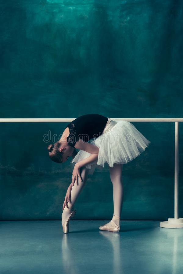 Den klassiska ballerina som poserar på balettbarren fotografering för bildbyråer