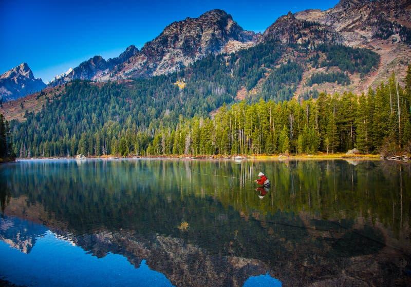 Den klipska fiskaren gjuter i sjön i den storslagna Teton nationalparken royaltyfri foto