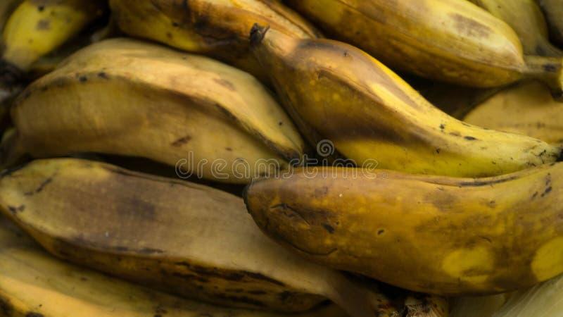 Den kokade eller ångade bananen är en populär frukostmat och en vård- frukt royaltyfri fotografi