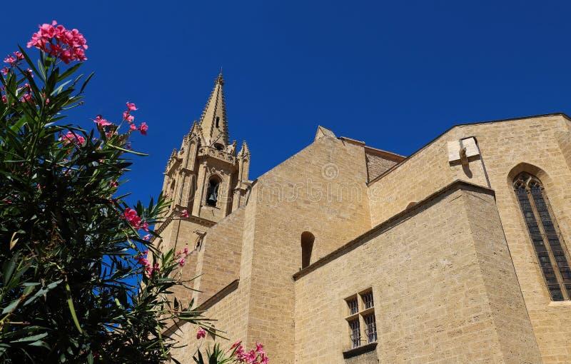 Den kollegiala kyrkliga Saint Laurent är ett utmärkt exempel av meridional gotisk stil för Frankrike ` s Salon de Provence Frankr royaltyfri foto