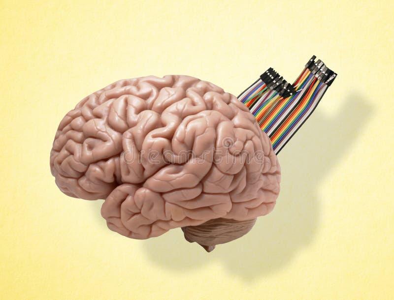 den konstgjorda hj?rnan circuits mainboard f?r elektronisk intelligens f?r begrepp ?ver arkivfoton