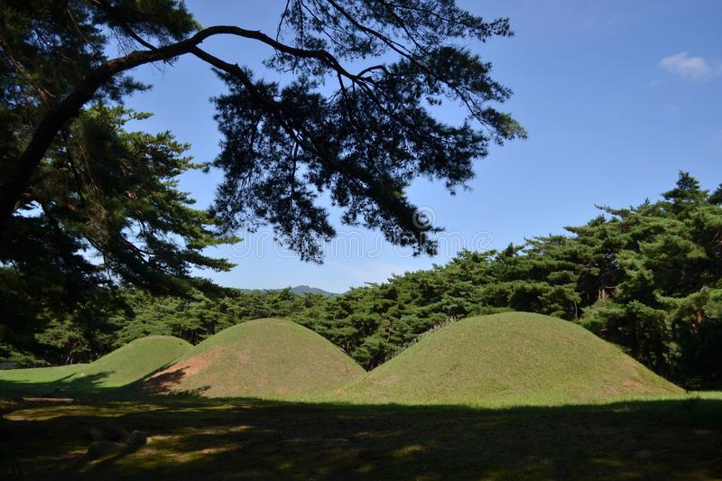Den koreanska gravvalvet runt om Samneung Pic togs i Augusti 2017 arkivfoton