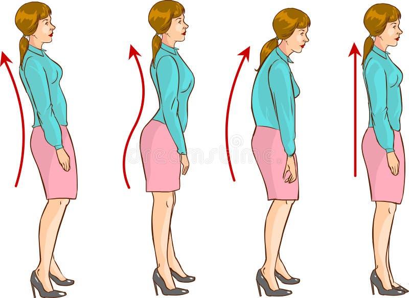 Den korrekta positionen av ryggen royaltyfri illustrationer