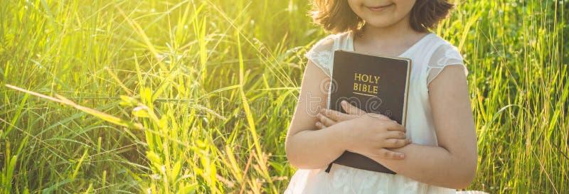Den kristna flickan rymmer bibeln i hennes händer Läsa den heliga bibeln i ett fält under härlig solnedgång Begrepp för tro royaltyfria foton