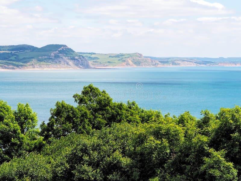 Den kust- banan förbiser på Lyme Regis fotografering för bildbyråer