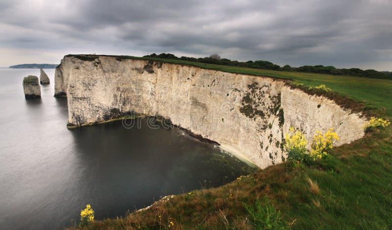 den kustdorset england golfen harry gammalt arkivbilder