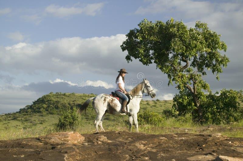 Den kvinnliga den hästryggryttaren och hästen rider att förbise Lewa djurlivnaturvård i norr Kenya, Afrika royaltyfri fotografi