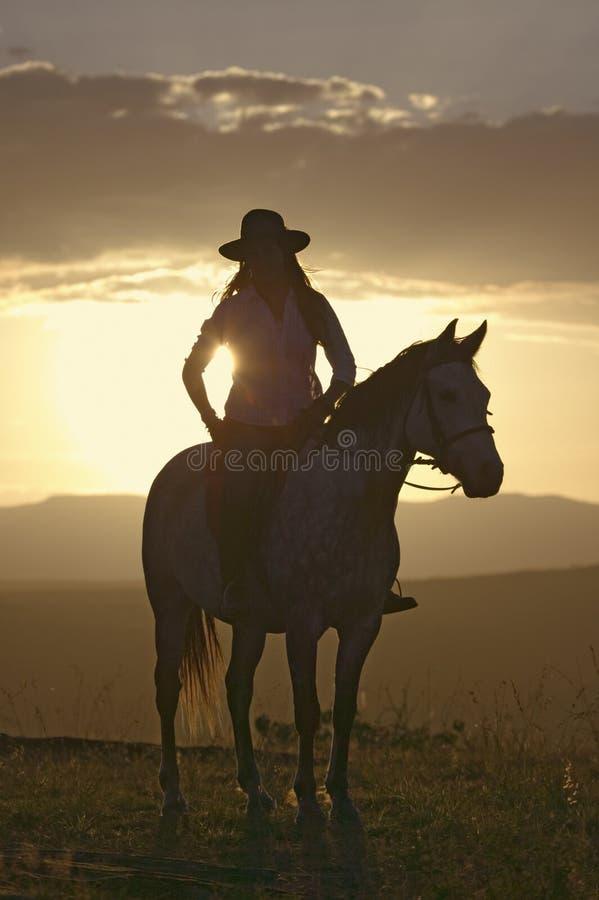 Den kvinnliga den hästryggryttaren och hästen rider för att förbise på Lewa djurlivnaturvård i norr Kenya, Afrika på solnedgången royaltyfria foton