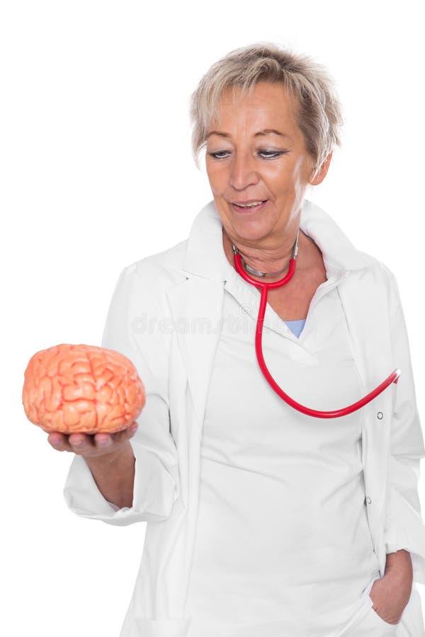 Den kvinnliga doktorn rymmer en hjärna royaltyfria bilder