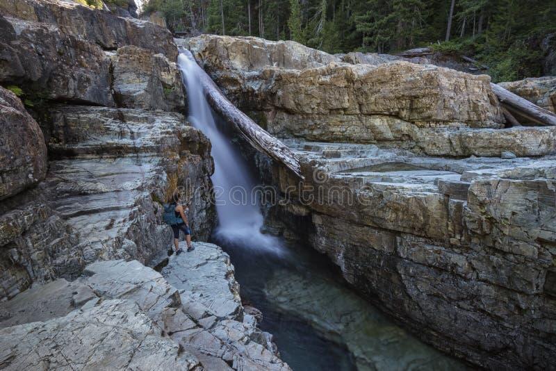 Den kvinnliga fotvandraren, lägre Myra Falls, provinsiella Strathcona parkerar, campar arkivfoton