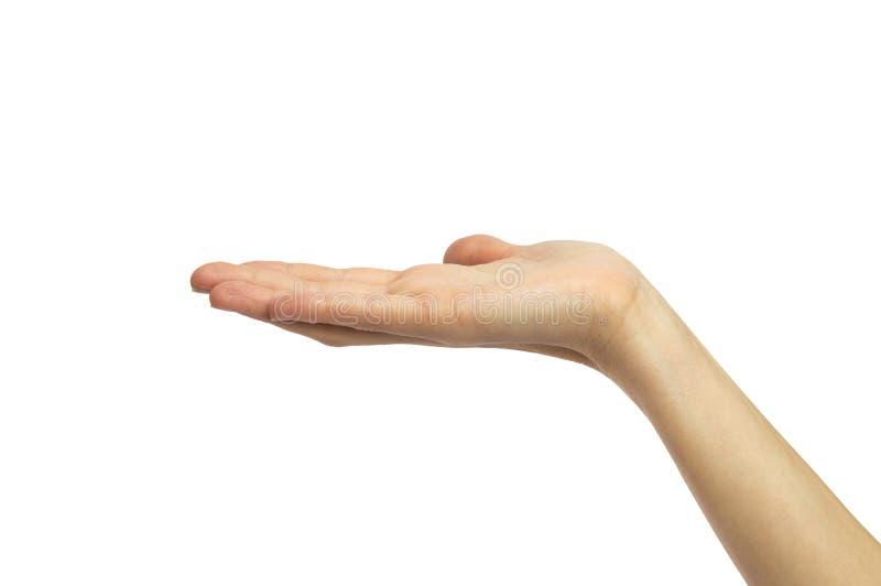 Den kvinnliga handen gömma i handflatan upp arkivbild