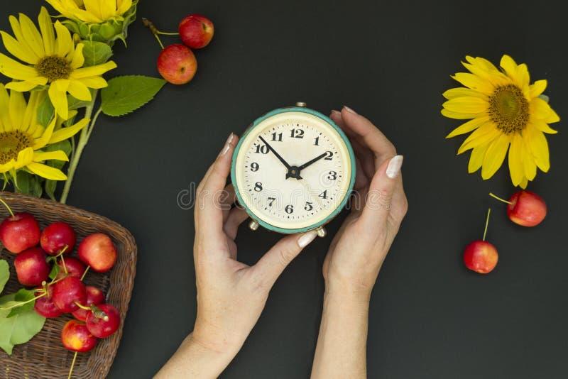 Den kvinnliga handen rymmer en gammal ringklocka nära en bukett av gula solrosor och blommor och röda äpplen i en korg på en svar arkivfoton