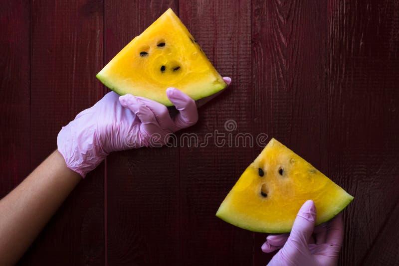 Den kvinnliga handen rymmer två vattenmelonskivor royaltyfria foton