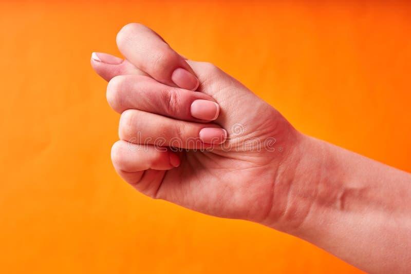 Den kvinnliga handen visar fikonträdtecknet f?rnekande royaltyfri fotografi