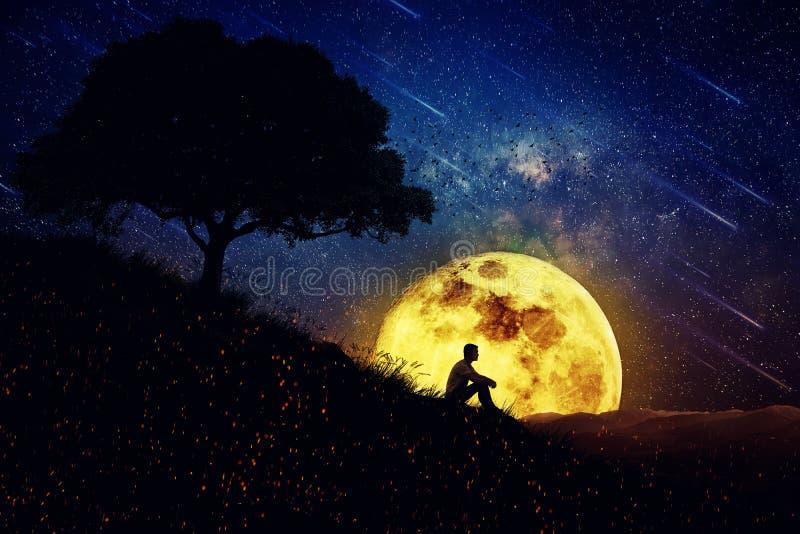Den läka makten av naturen (nattplatsen) royaltyfri foto