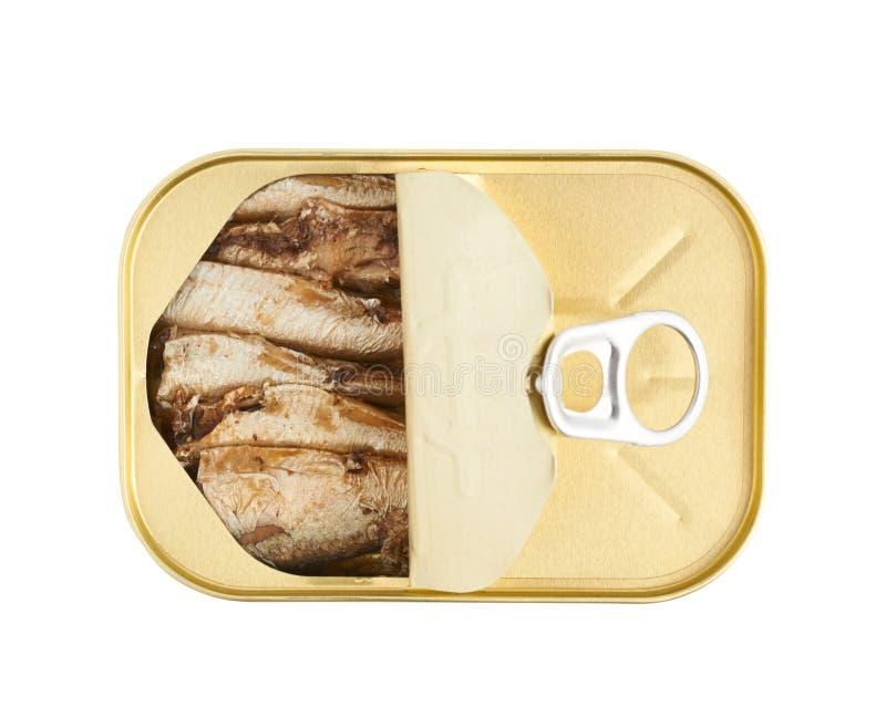 Den lätta öppna sardinen kan med handtagfliken royaltyfri bild