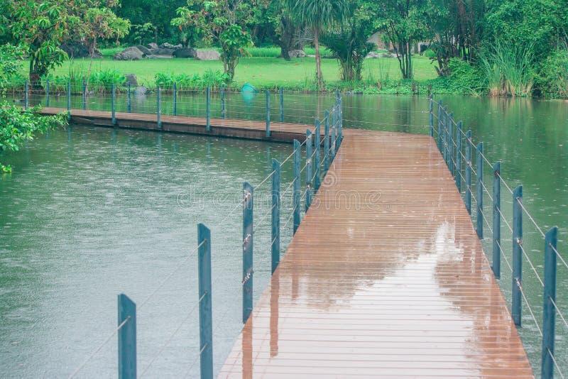 Den långa träbron korsar över sjön parkerar offentligt omgivet med grönt naturligt arkivbild