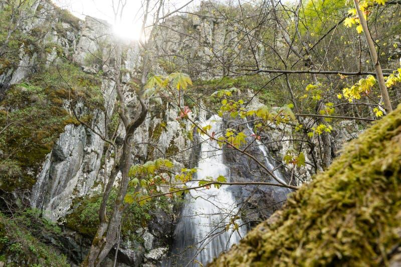 Den långa vattenfallet i mitt av skogen en europé vaggar berg från den Balkan halvön Solnedgång med vatten som faller i royaltyfria bilder