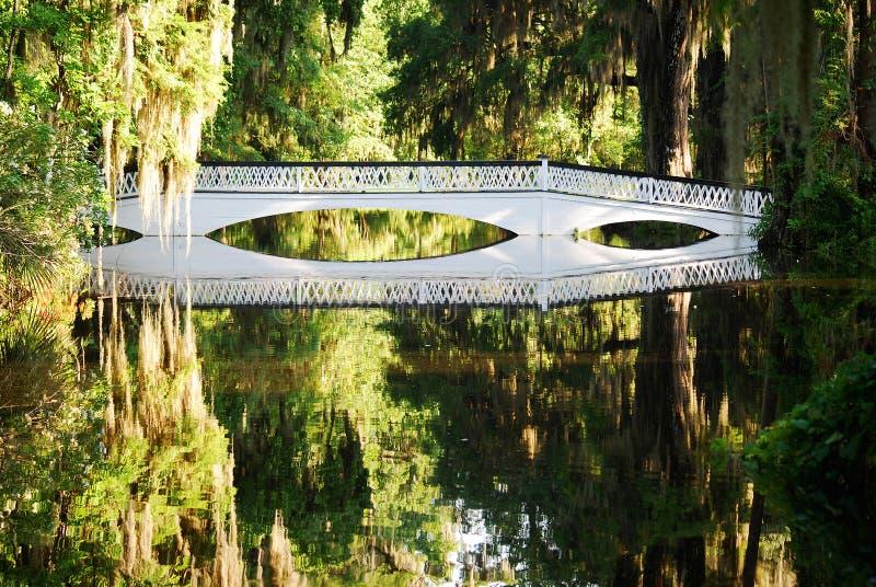 Den långa vita bron på de magnoliakolonierna och trädgårdarna arkivfoto