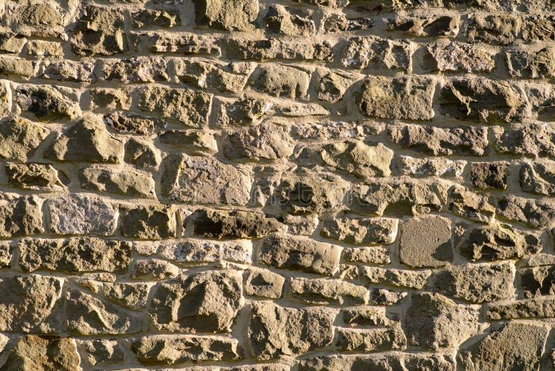 Den lantliga engelska väggen Disley, Stockport, Derbyshire England Lyme parkerar royaltyfri fotografi