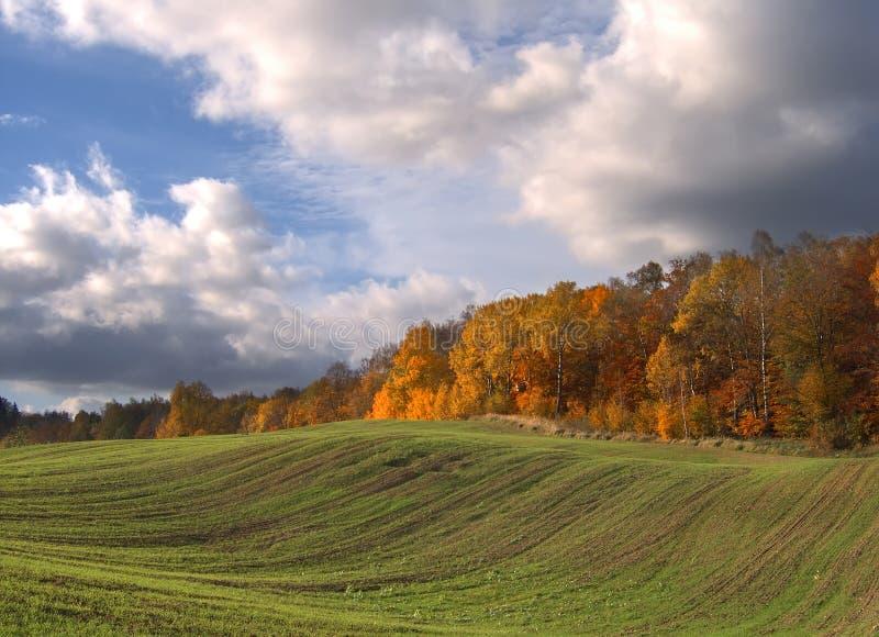Den lantliga hösten landskap arkivbilder