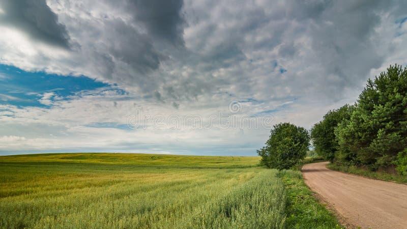 Den lantliga sommaren landskap en grusväg längs det jordbruks- fältet under en härlig molnig himmel royaltyfria foton