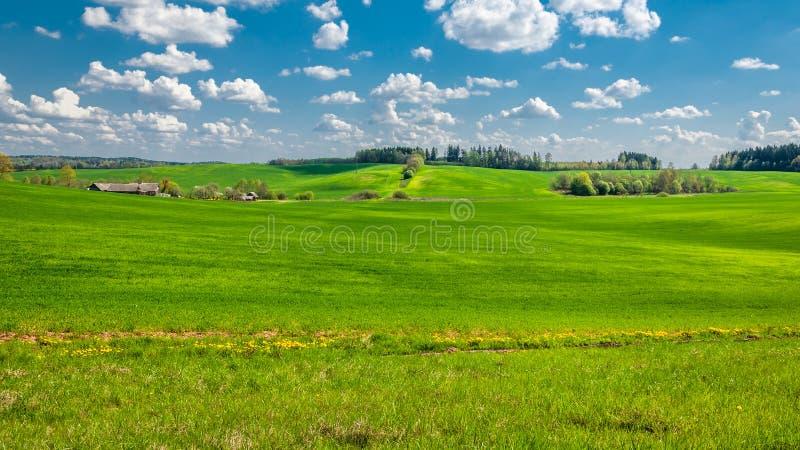 Den lantliga sommaren landskap jordbruks- bergigt fält med en liten liten by som täckas med grönt gräs under en blå molnig himmel arkivbild